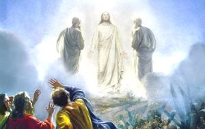 trasfigurazione 1
